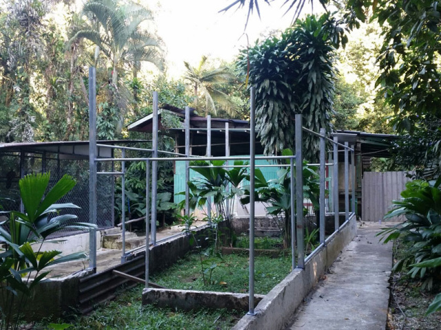 New and Improved Cages - Costa Rica Zoo