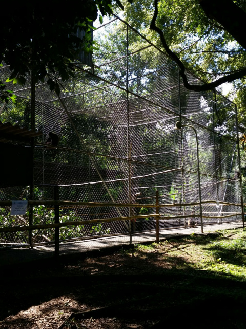 New Cages - Zoo Costa Rica
