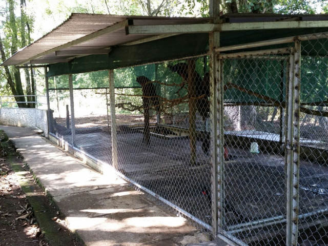 Updates to Fence and Enclosures at Zoo Costa RIca